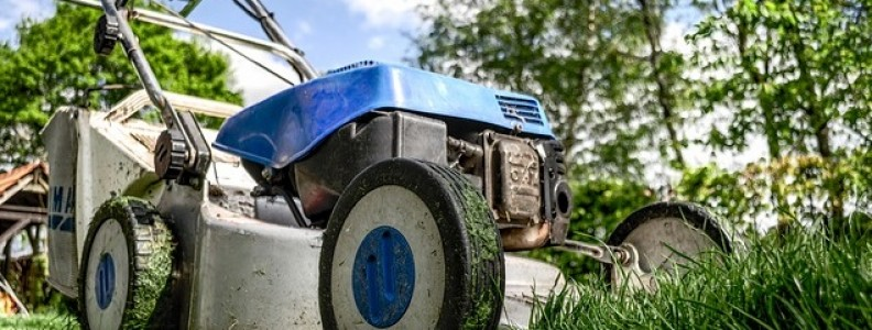 What Can You Expect From A Professional Lawn Maintenance Provider?