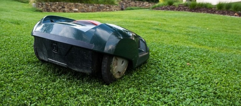 Protecting Your Lawn From The Winter Coldness