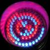 Enjoy The Amazing Benefits Of Installing LED Lighting!