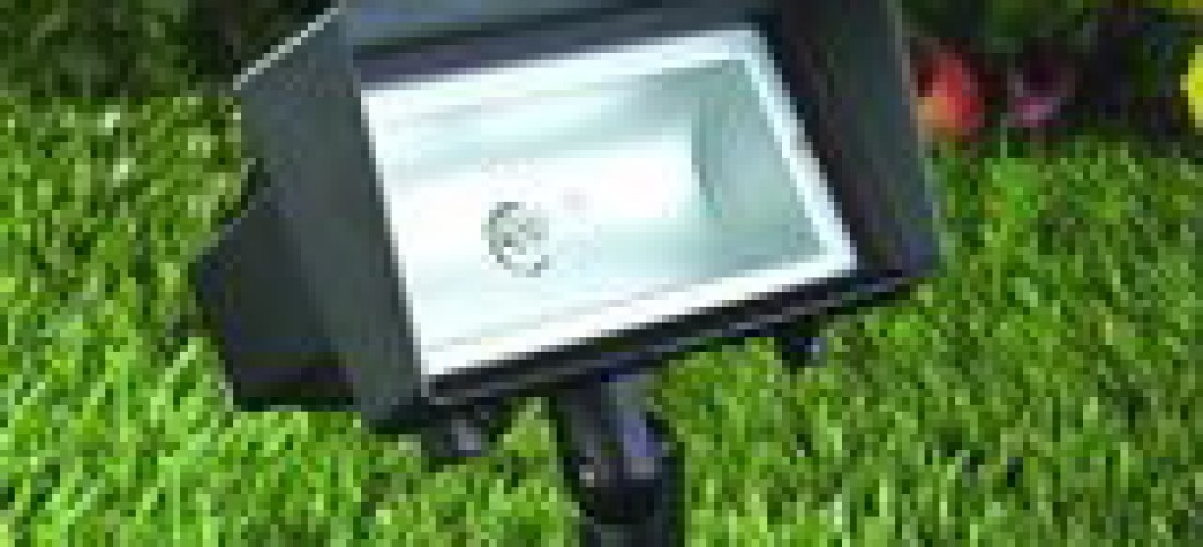 Landscaping Lighting 7